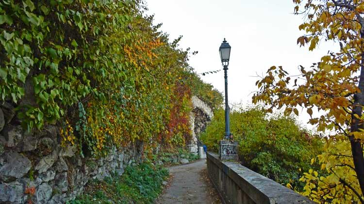 pathway gellert hill